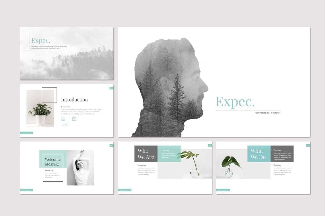 Expec - PowerPoint Template, Slide 2, 07820, Presentation Templates — PoweredTemplate.com