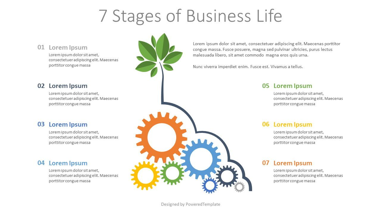 7 Stages of Business Life, 07890, Infographics — PoweredTemplate.com
