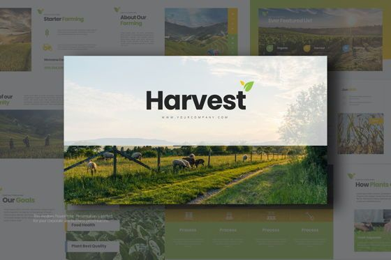 Business Models: Harvest Google Slide Templates #08191