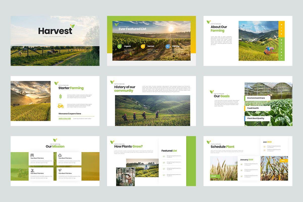 Harvest Google Slide Templates, Slide 2, 08191, Business Models — PoweredTemplate.com