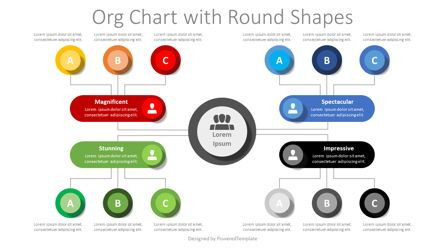 Flow Charts: Org Chart with Round Shapes #08407
