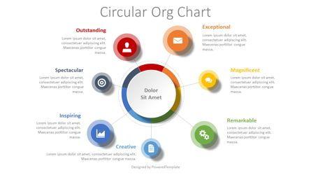 Organizational Charts: Circular Org Diagram #08428