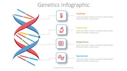 Medical Diagrams and Charts: Genetics Infographic #08435