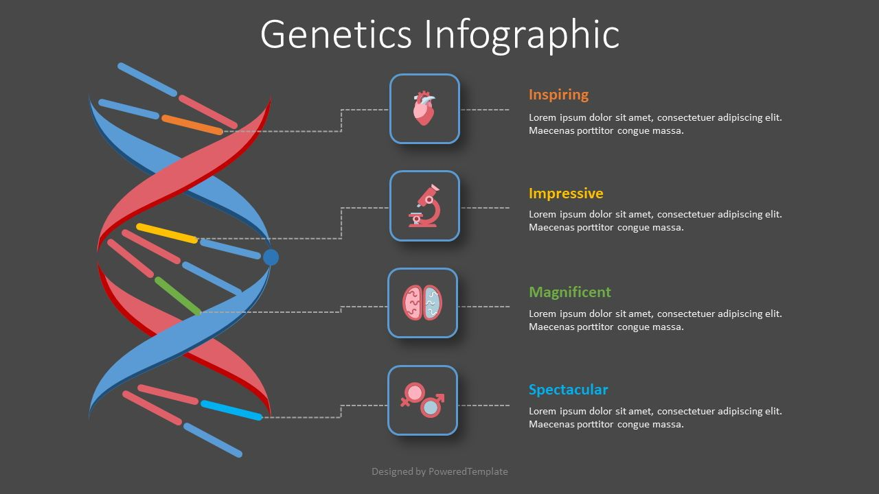 Genetics Infographic, Slide 2, 08435, Medical Diagrams and Charts — PoweredTemplate.com