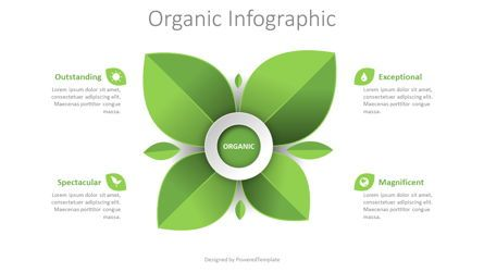 Infographics: Organic Product Infographic #08436