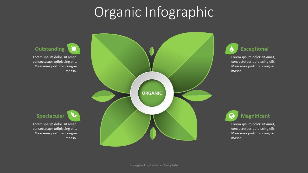 Organic Product Infographic, Slide 2, 08436, Infographics — PoweredTemplate.com