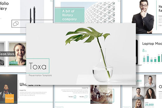 Presentation Templates: Toxa - Google Slides Template #08519