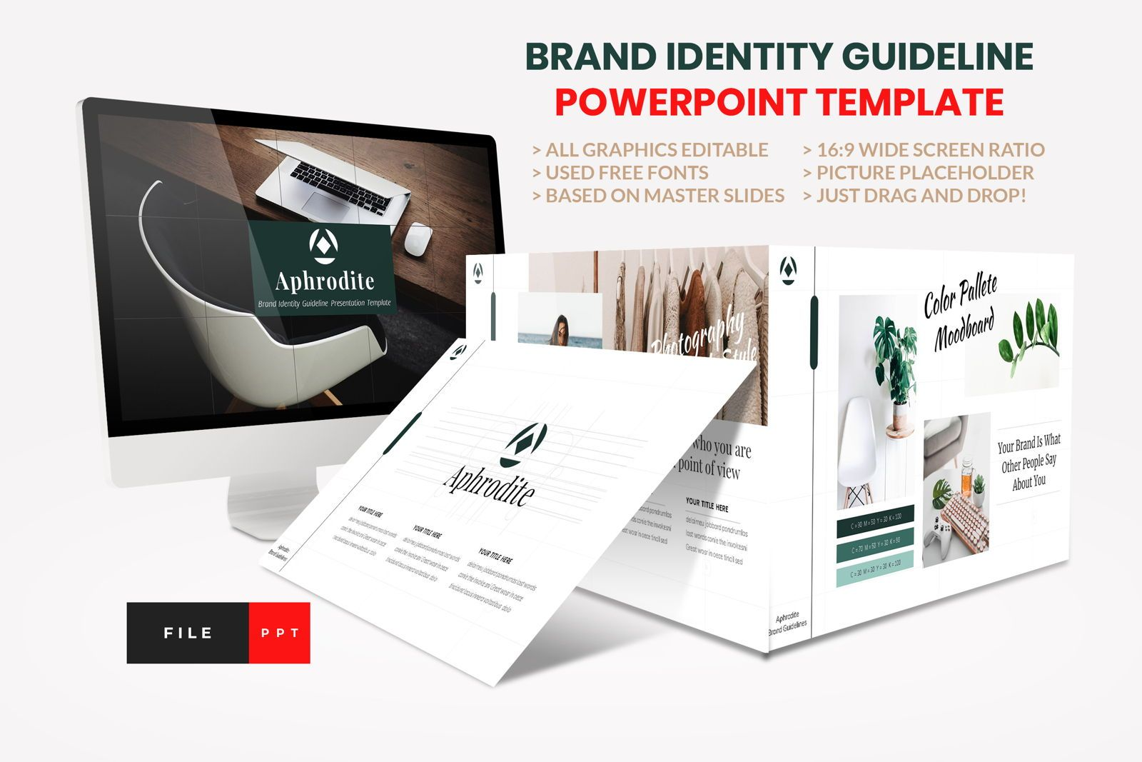 Brand Identity Guideline PowerPoint Template, 08594, Presentation Templates — PoweredTemplate.com