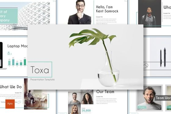 Presentation Templates: Toxa - PowerPoint Template #08616