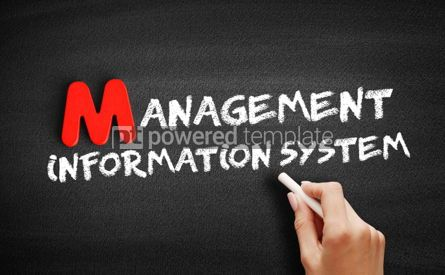 Business: Management Information System text #00114