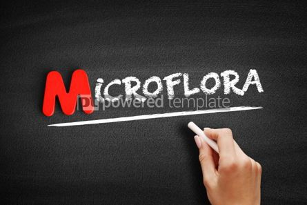 Business: Microflora text on blackboard #00122
