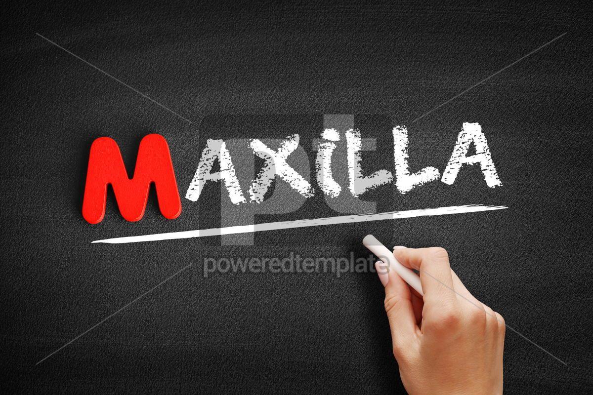Maxilla text on blackboard, 00128, Business — PoweredTemplate.com