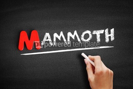 Business: Mammoth text on blackboard #00130