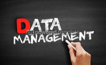 Business: Data Management text on blackboard #00191