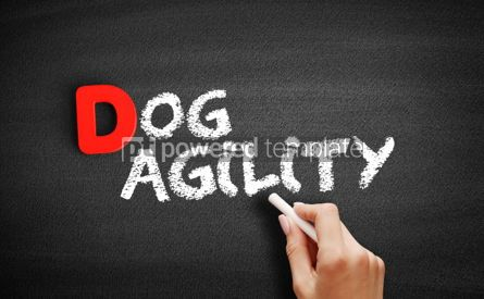 Business: Dog agility text on blackboard #00233