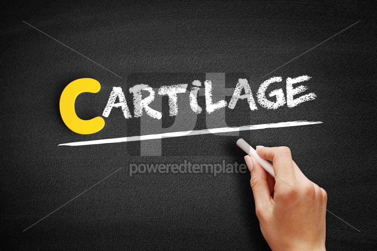 Cartilage text on blackboard, 00449, Business — PoweredTemplate.com