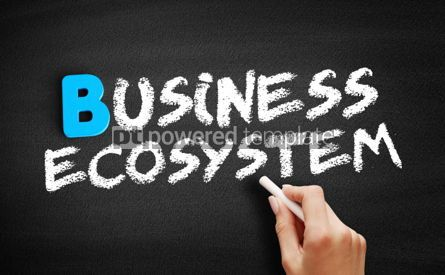 Business: Business ecosystem text on blackboard #00533