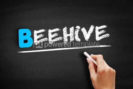 Business: Beehive text on blackboard #00541