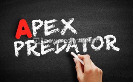 Business: Apex predator text on blackboard #00799