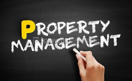 Business: Property Management text on blackboard #00867
