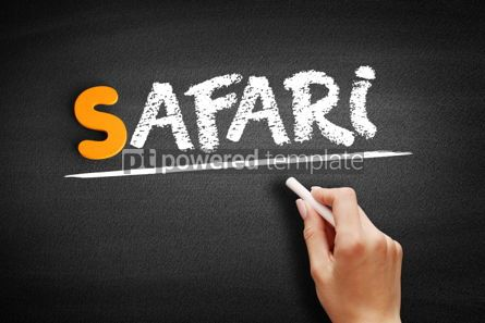 Business: Safari text on blackboard #01030