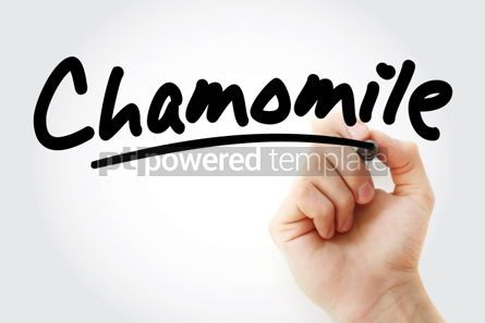 Business: Hand writing Chamomile with marker #02001