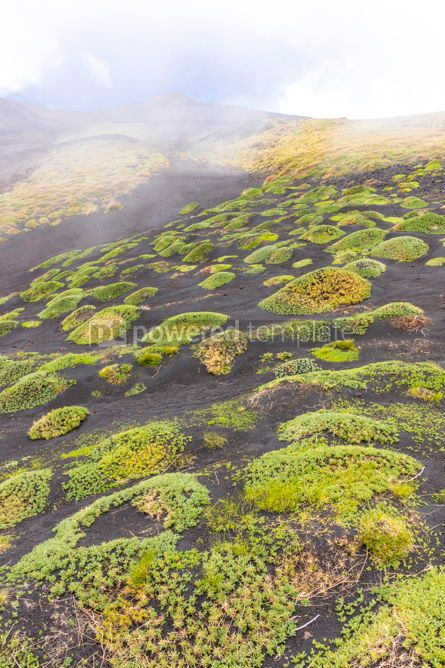 Nature: Picturesque volcanic landscape of Mount Etna Sicily Italy #02860