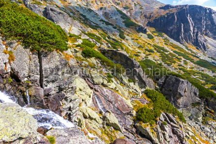 Nature: Skok waterfall in High Tatras Mountains (Vysoke Tatry) Slovakia #02923