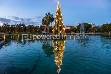 Holidays: Illuminated decorated New Year tree reflected in the water #02993