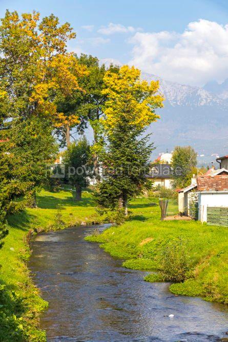 Nature: Slavkovsky potok stream in Velky Slavkov village Slovakia #03036