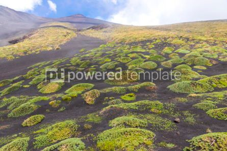 Nature: Picturesque volcanic landscape of Mount Etna Sicily Italy #03065