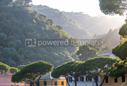 Nature: Paraggi village Santa Margherita Ligure Italy #03083