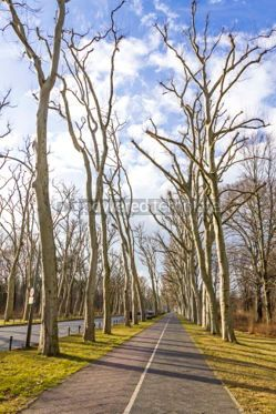 Nature: Soviet War Memorial (Treptower Park) in Berlin Germany #03238