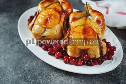 Food & Drink: Two whole roasted chicken with cranberries and orange slices. #03266