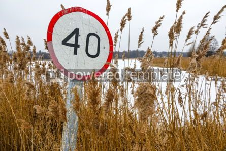 Nature: Old speed limit sign on the side of the road #03315