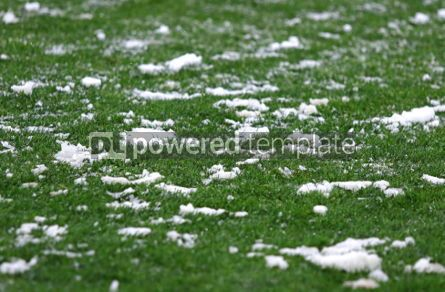 Sports : Green grass on a football soccer field #03433