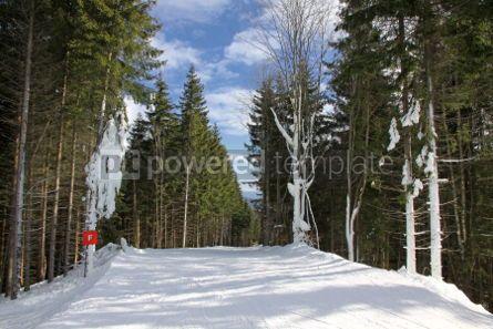 Nature: Ski track of Bukovel ski resort Carpathian mountains Ukraine #03495