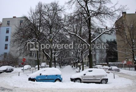 Architecture : Autos covered with a snow parked on the street #03516