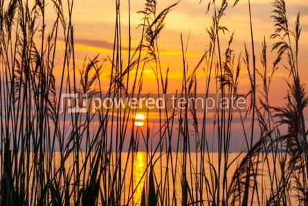 Nature: Sunrise over the Balaton lake Hungaru #03669