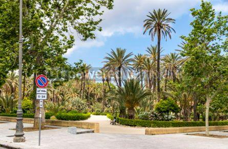 Nature: Villa Bonanno public garden in Palermo Sicily Italy #03689