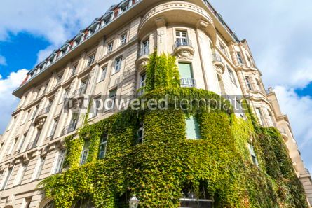 Architecture : Building covered with green ivy plants #03785