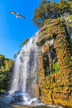 Architecture : Scenic view of waterfall in Castle Hill Park (Parc de la Colline #03787