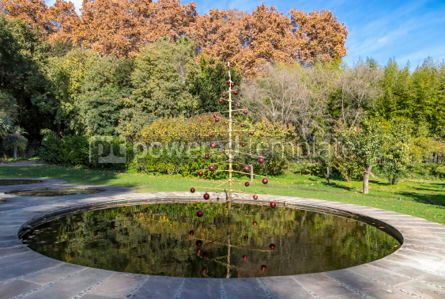 Holidays: Botanical Garden in Malaga Andalusia Spain #03852