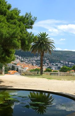 Architecture : Dubrovnik old town Croatia. View from Gradac Park #03860
