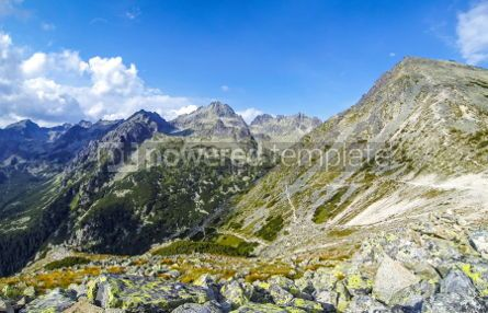 Nature: Picturesque summer view of High Tatras mountains Slovakia #03870