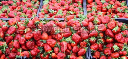 Food & Drink: Close-up heap of fresh ripe strawberries at a street market stan #03911
