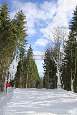 Sports : Ski track of Bukovel ski resort Carpathian mountains Ukraine #03917