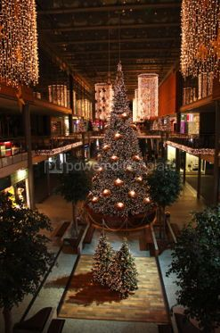 Holidays: Shopping mall interior decorated with christmas trees #04040