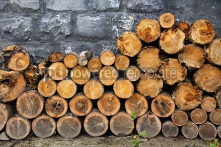 Nature: Pile of firewood #04217