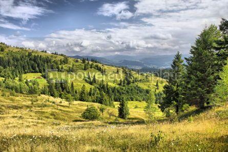 Nature: Mountains landscape near Yaremche village in Carpathians Ukrain #04224